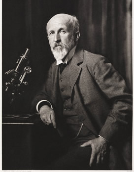 Oskar Hertwig