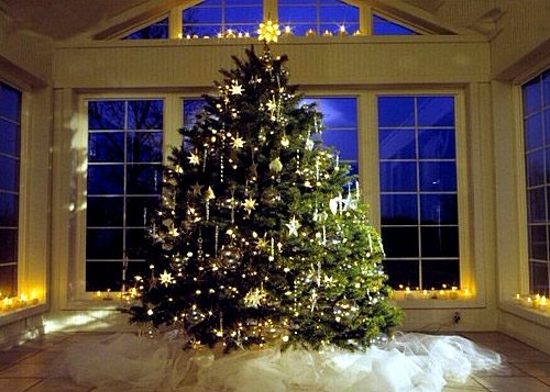 The First Known Christmas Tree Was Set Up In 1419 Freiburg By Town Bakers Who Decorated With Fruits Nuts And Baked Goods