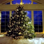 Christmas tree – Tannenbaum