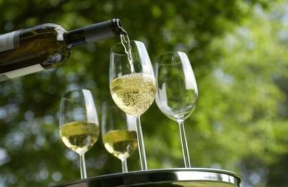 German Wines German Culture