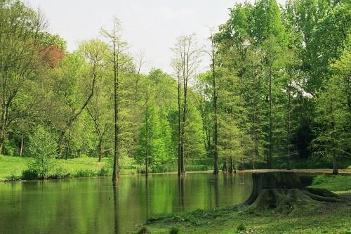 Dortmund_rombergpark